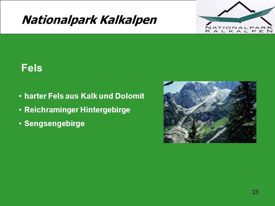 23 Nationalpark Kalkalpen Fels harter Fels aus Kalk und Dolomit Reichraminger Hintergebirge Sengsengebirge