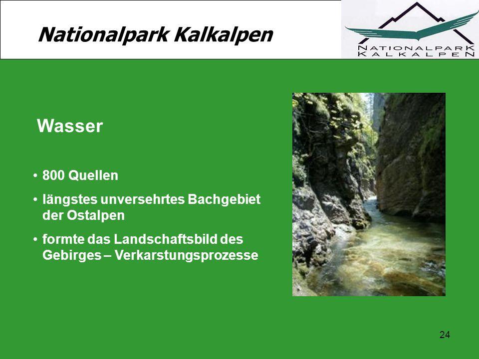 24 Nationalpark Kalkalpen Wasser 800 Quellen längstes unversehrtes Bachgebiet der Ostalpen formte das Landschaftsbild des Gebirges – Verkarstungsproze