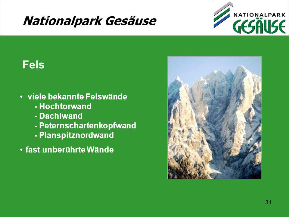31 Nationalpark Gesäuse Fels viele bekannte Felswände - Hochtorwand - Dachlwand - Peternschartenkopfwand - Planspitznordwand fast unberührte Wände