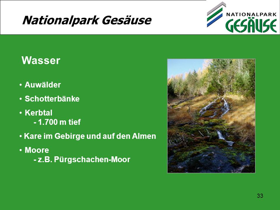 33 Nationalpark Gesäuse Wasser Auwälder Schotterbänke Kerbtal - 1.700 m tief Kare im Gebirge und auf den Almen Moore - z.B. Pürgschachen-Moor
