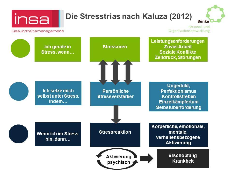 Ich gerate in Stress, wenn… Ich setze mich selbst unter Stress, indem… Wenn ich im Stress bin, dann… Stressoren Persönliche Stressverstärker Körperlic