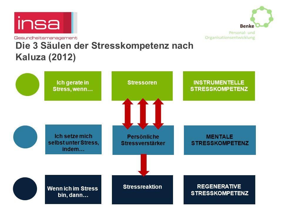 Ich gerate in Stress, wenn… Ich setze mich selbst unter Stress, indem… Wenn ich im Stress bin, dann… Stressoren Persönliche Stressverstärker REGENERAT