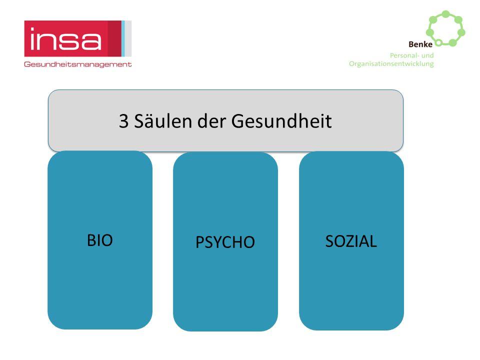 3 Säulen der Gesundheit BIO SOZIAL PSYCHO