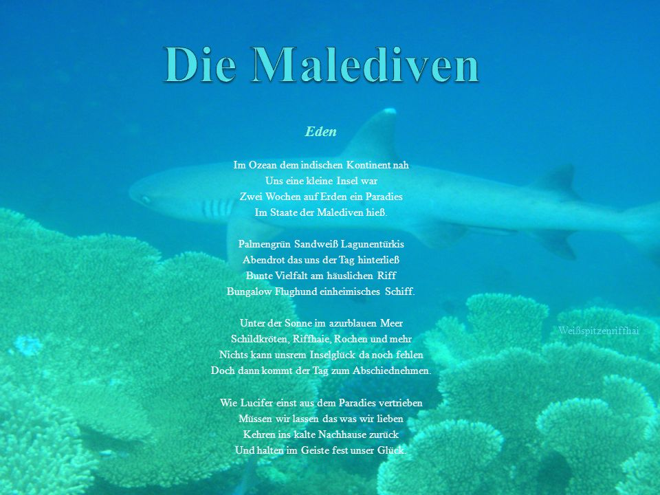 Eden Im Ozean dem indischen Kontinent nah Uns eine kleine Insel war Zwei Wochen auf Erden ein Paradies Im Staate der Malediven hieß.