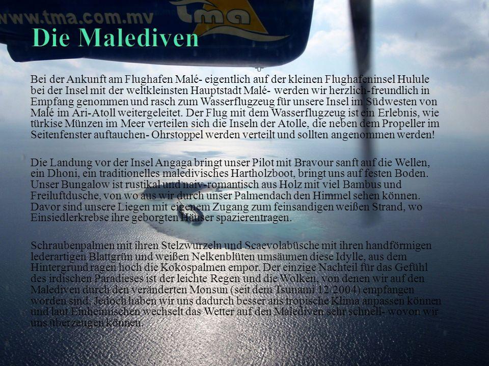 Bei der Ankunft am Flughafen Malé- eigentlich auf der kleinen Flughafeninsel Hulule bei der Insel mit der weltkleinsten Hauptstadt Malé- werden wir herzlich-freundlich in Empfang genommen und rasch zum Wasserflugzeug für unsere Insel im Südwesten von Malé im Ari-Atoll weitergeleitet.
