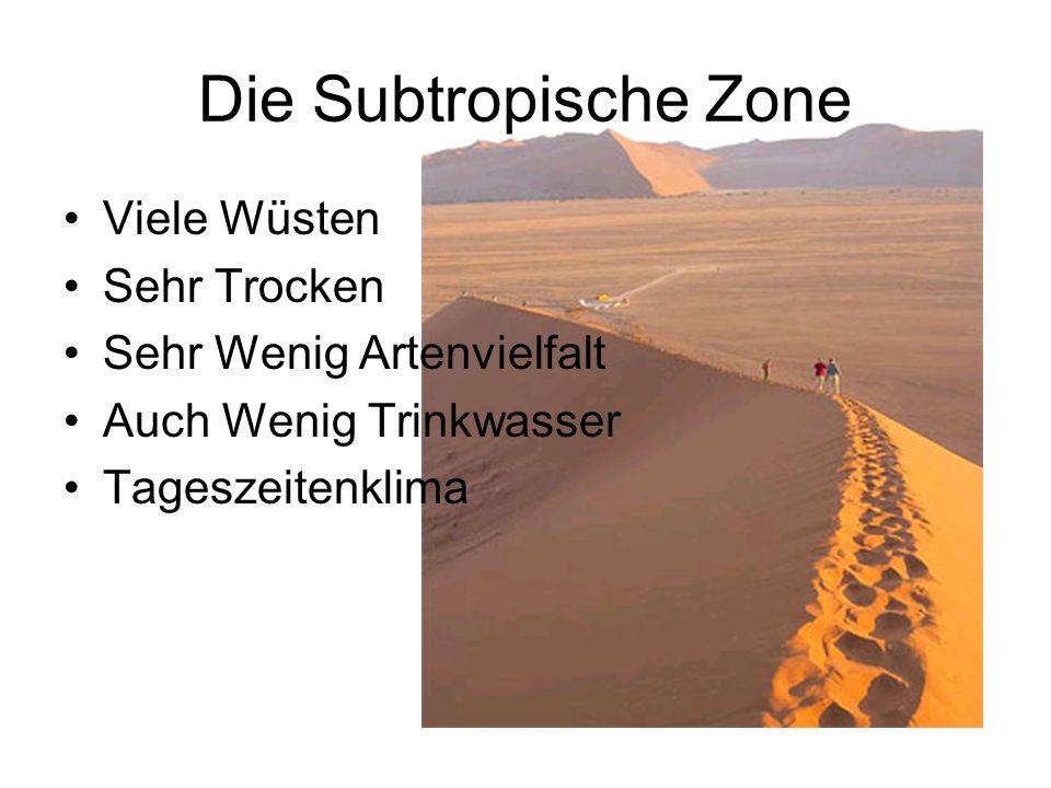 Die Subtropische Zone Viele Wüsten Sehr Trocken Sehr Wenig Artenvielfalt Auch Wenig Trinkwasser Tageszeitenklima