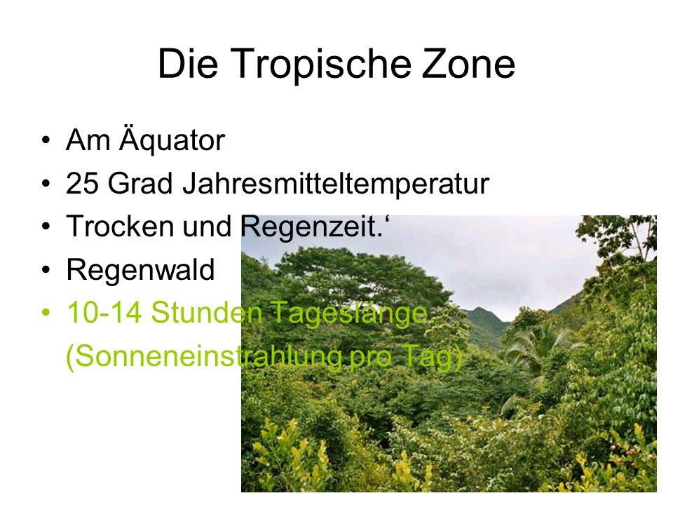 Die Tropische Zone Am Äquator 25 Grad Jahresmitteltemperatur Trocken und Regenzeit.' Regenwald 10-14 Stunden Tageslänge.