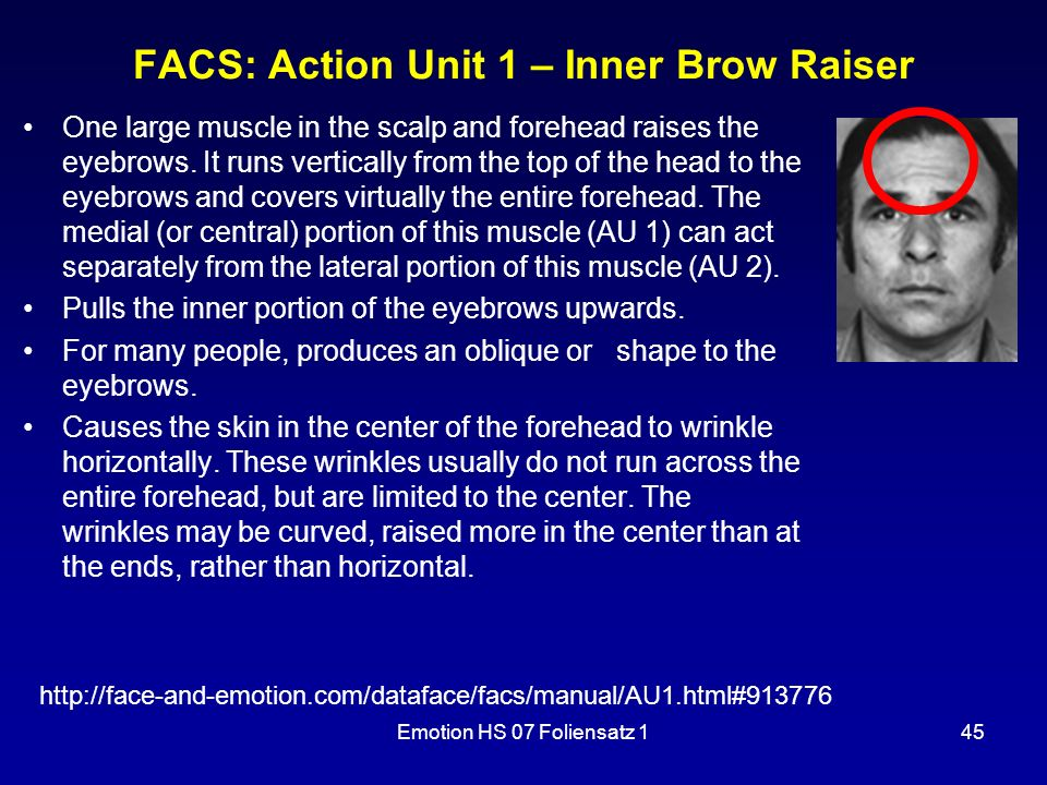 Emotion HS 07 Foliensatz 145 FACS: Action Unit 1 – Inner Brow Raiser One large muscle in the scalp and forehead raises the eyebrows.