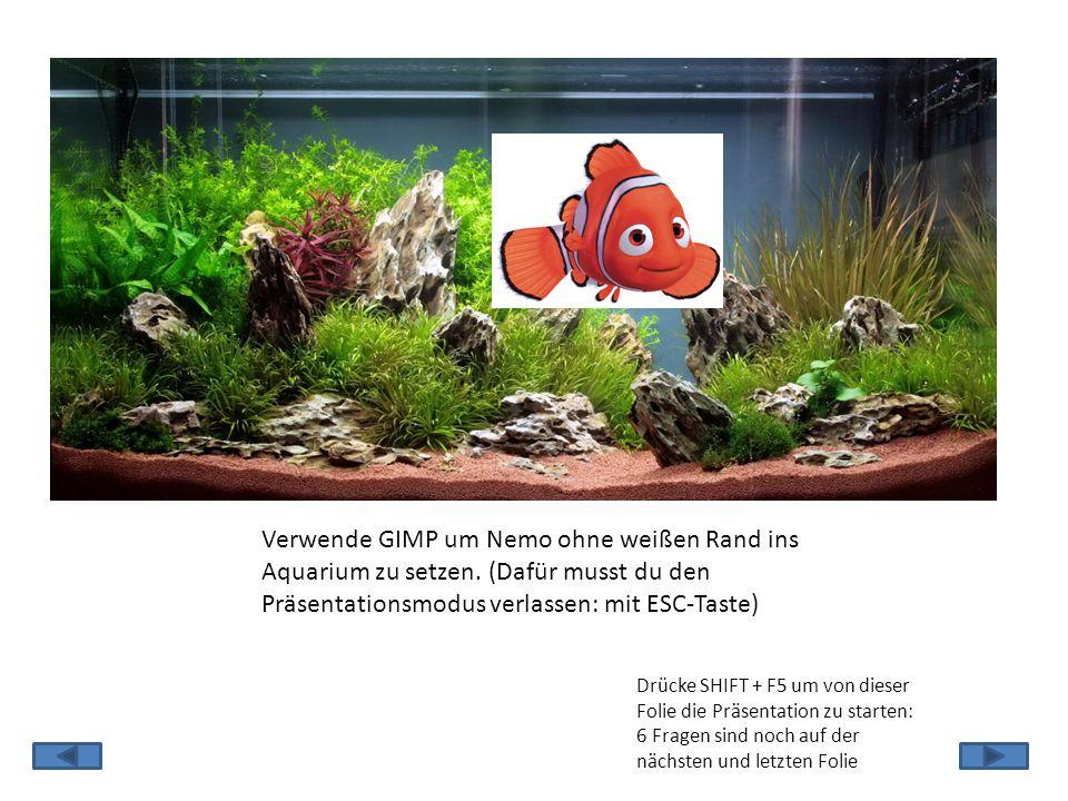 Verwende GIMP um Nemo ohne weißen Rand ins Aquarium zu setzen.