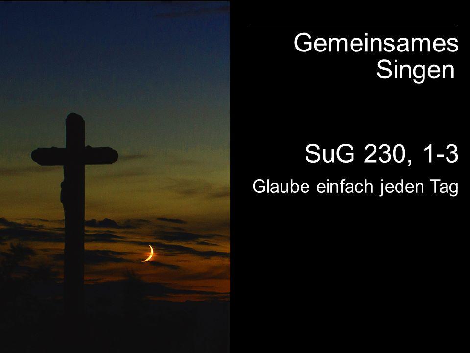 SuG 230, 1-3 Gemeinsames Singen Glaube einfach jeden Tag