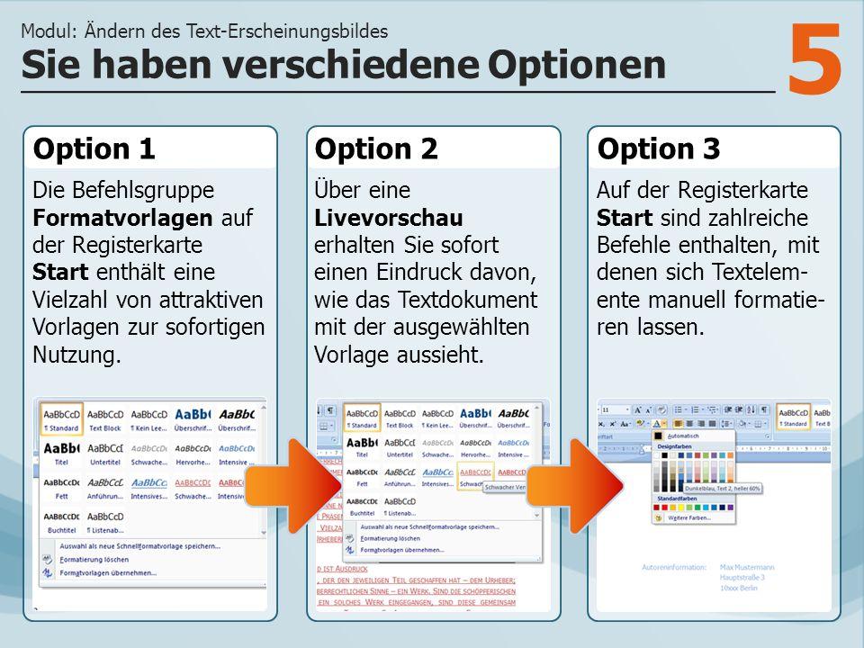 5 Option 1 Die Befehlsgruppe Formatvorlagen auf der Registerkarte Start enthält eine Vielzahl von attraktiven Vorlagen zur sofortigen Nutzung. Option