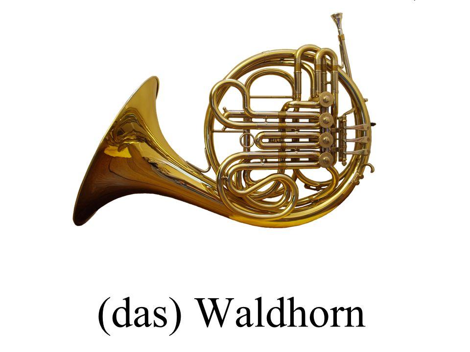 (die) Flöte