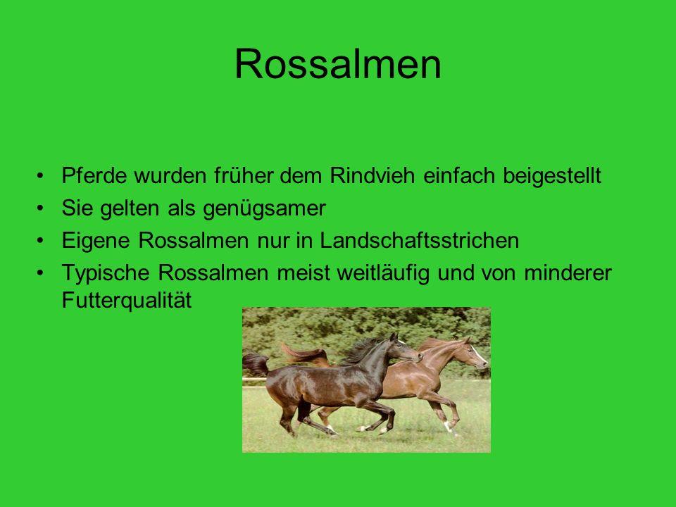 Rossalmen Pferde wurden früher dem Rindvieh einfach beigestellt Sie gelten als genügsamer Eigene Rossalmen nur in Landschaftsstrichen Typische Rossalm