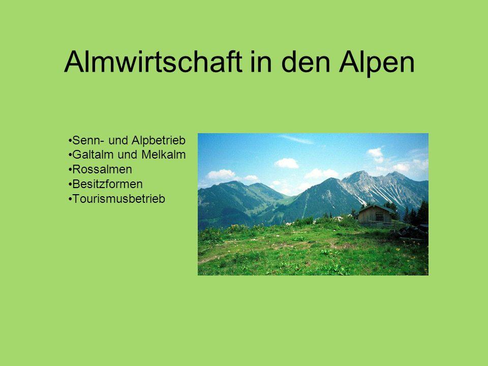 Almwirtschaft in den Alpen Senn- und Alpbetrieb Galtalm und Melkalm Rossalmen Besitzformen Tourismusbetrieb