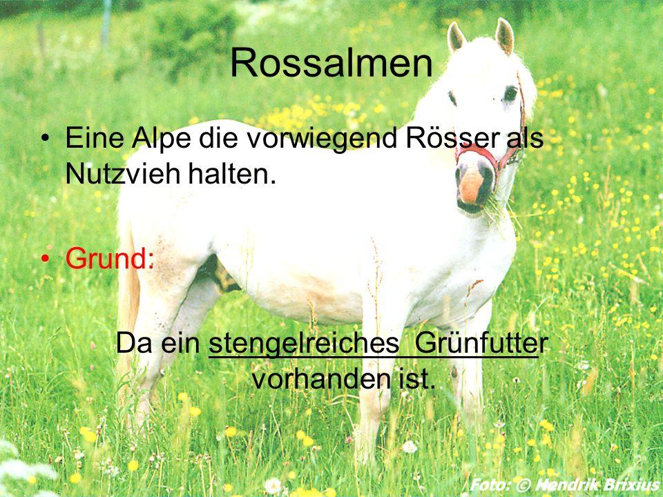 Rossalmen Eine Alpe die vorwiegend Rösser als Nutzvieh halten. Grund: Da ein stengelreiches Grünfutter vorhanden ist.