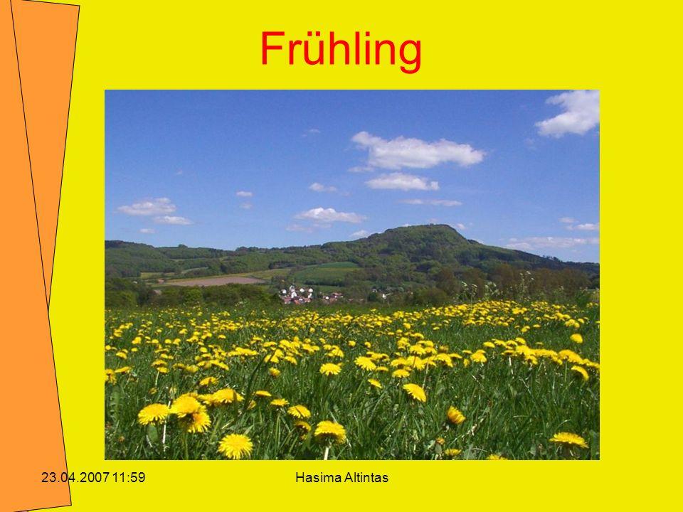 Hasima Altintas23.04.2007 11:59 Frühling