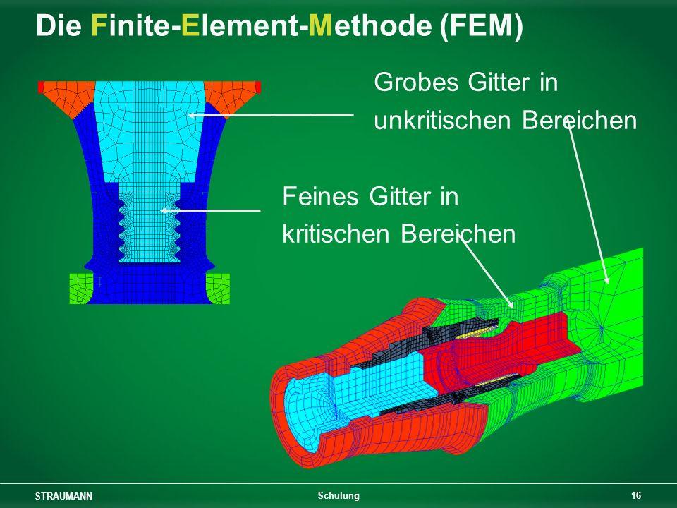 STRAUMANN 16 Schulung Die Finite-Element-Methode (FEM) Grobes Gitter in unkritischen Bereichen Feines Gitter in kritischen Bereichen