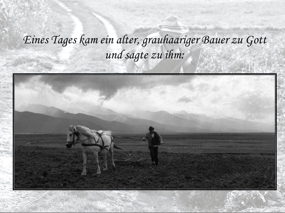 Das war die Geschichte vom alten Bauer und Gott www.Licht.Liebe.at Feb / 2009 Klick Ende