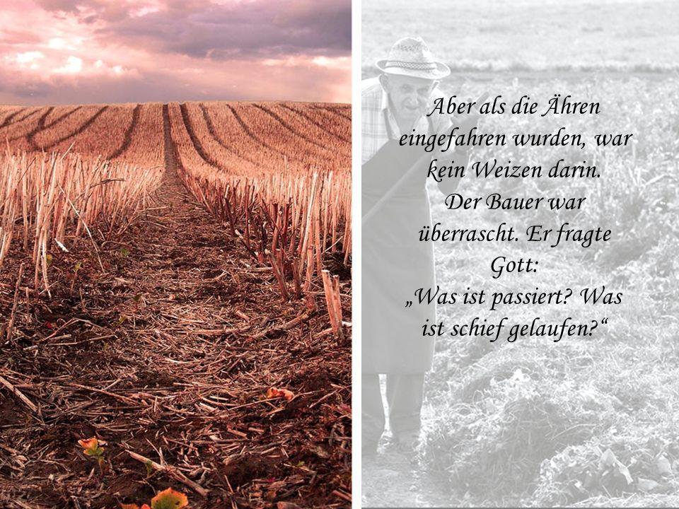 """Der Bauer ging oft zu Gott und sagte: """"Schau! Dieses Jahr wird die Ernte so ausfallen, dass sie für viele, viele Jahre reicht, selbst wenn die Leute n"""