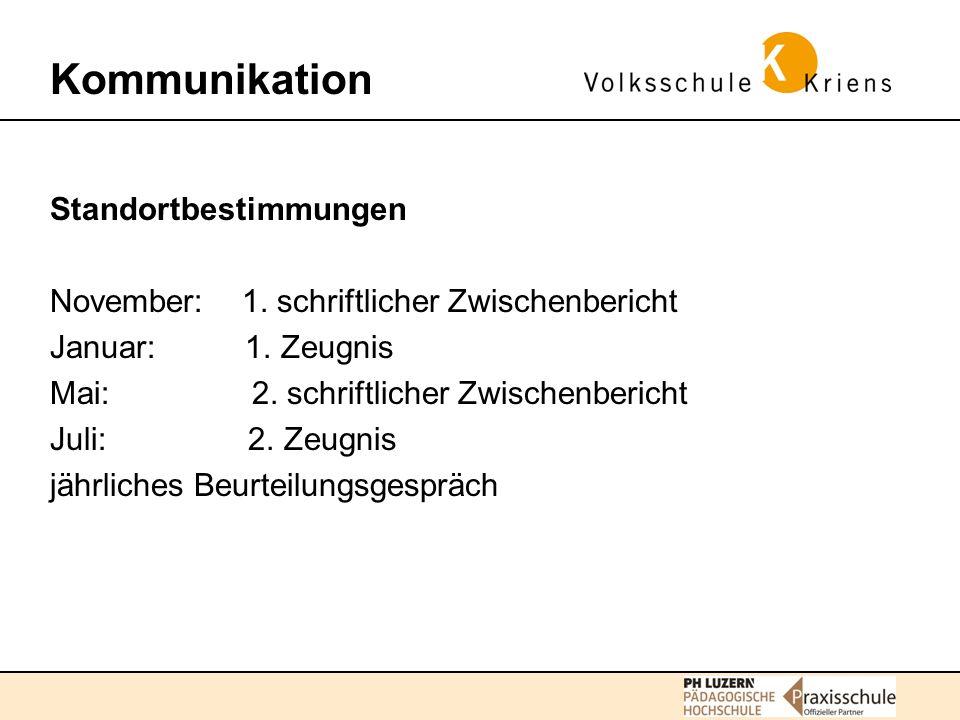 Kommunikation Standortbestimmungen November: 1. schriftlicher Zwischenbericht Januar: 1.
