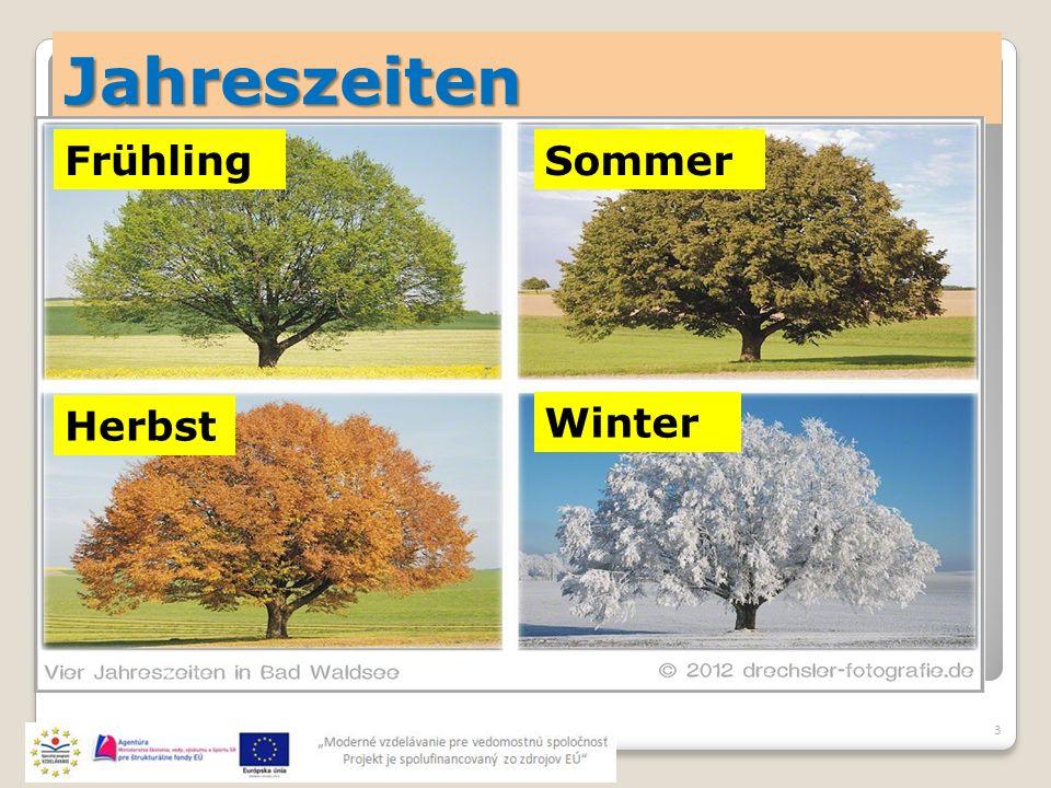 Jahreszeiten 3 Sommer Herbst Frühling Winter