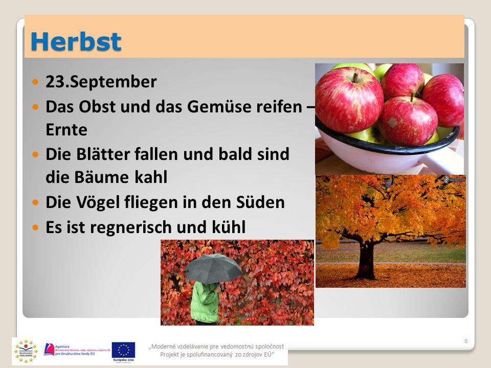 Herbst 23.September Das Obst und das Gemüse reifen – Ernte Die Blätter fallen und bald sind die Bäume kahl Die Vögel fliegen in den Süden Es ist regnerisch und kühl 6