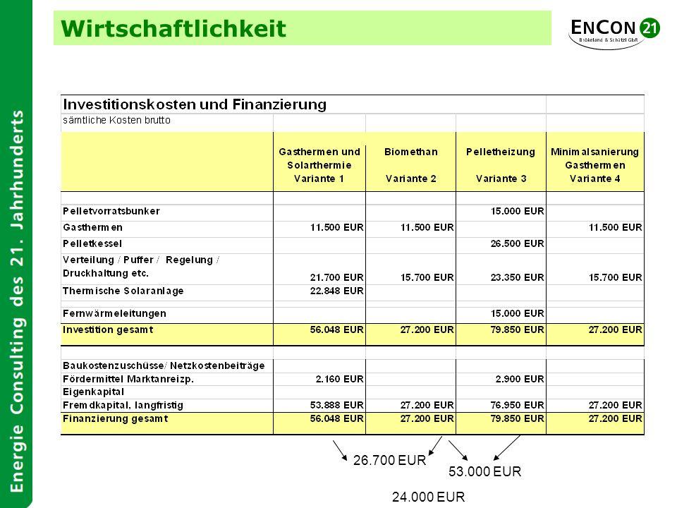 Wirtschaftlichkeit 26.700 EUR 53.000 EUR 24.000 EUR