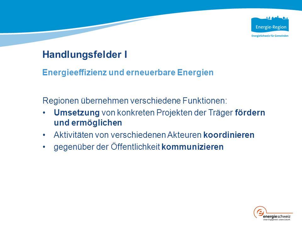Handlungsfelder I Energieeffizienz und erneuerbare Energien Regionen übernehmen verschiedene Funktionen: Umsetzung von konkreten Projekten der Träger fördern und ermöglichen Aktivitäten von verschiedenen Akteuren koordinieren gegenüber der Öffentlichkeit kommunizieren