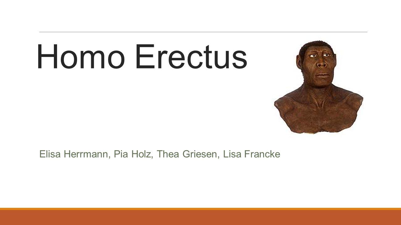 Bedeutung des Namens Homo (lat.) - Mensch erectus (lat.) - aufrichten Aufrechter Mensch Quelle: Helles-Köpfchen.de