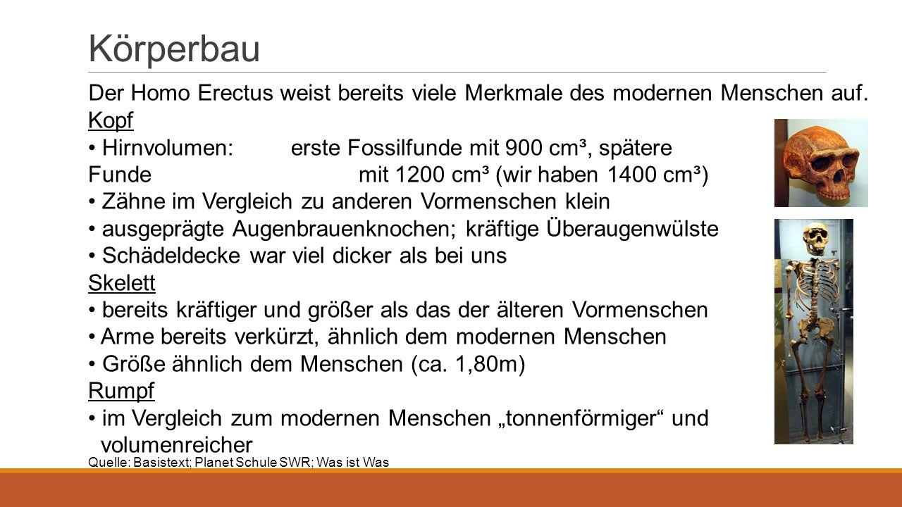 Nahrung Früchte, Wurzelgemüse und Fleisch Jäger und Sammler Quelle: helles-koepfchen.de/Geschichte-der-Evolution/urmensch-homo-erectus- neanderthaler-und-homo-sapiens.html