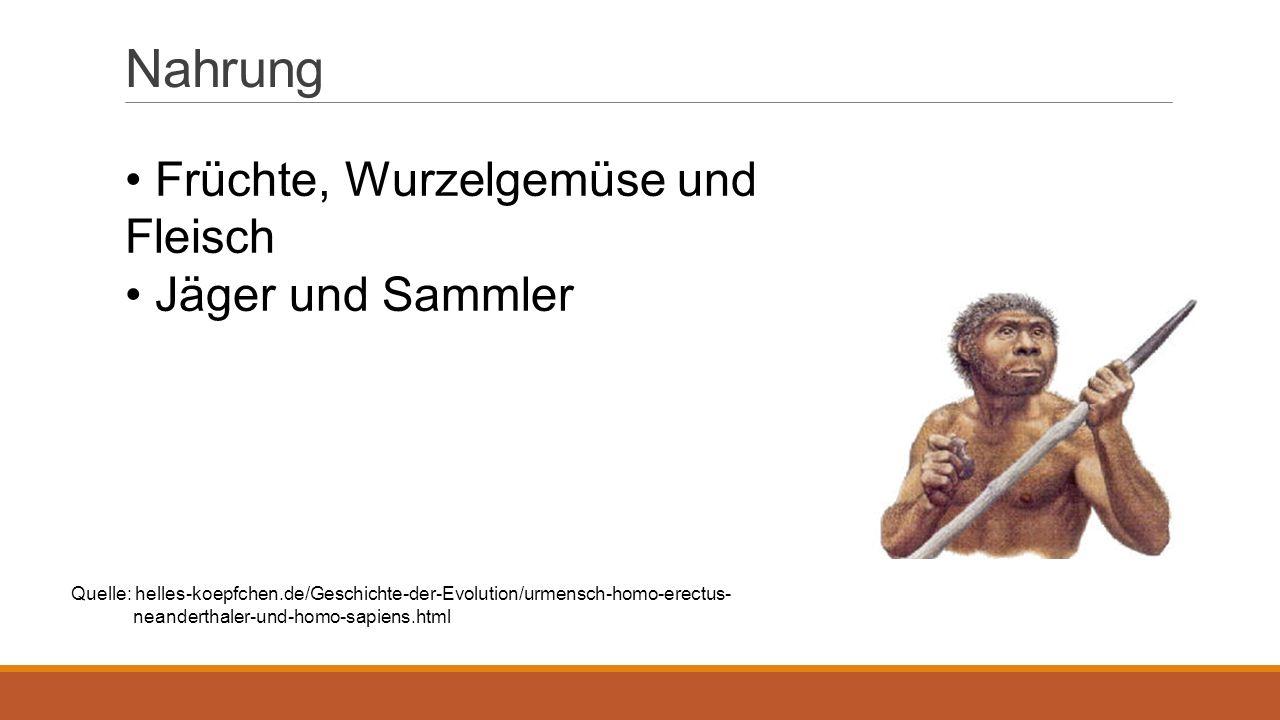 Fähigkeiten Kannten wahrscheinlich Feuer Konnten Steinwerkzeug herstellen Konnten Faustkeilen herstellen Konnten Hütten bauen Entstehung von Jagdtechniken Quelle: Basistext +helles-koepfchen.de/Geschichte-der-Evolution/urmensch-homo-erectus- neanderthaler-und-homo-sapiens.html+visualphotos.com