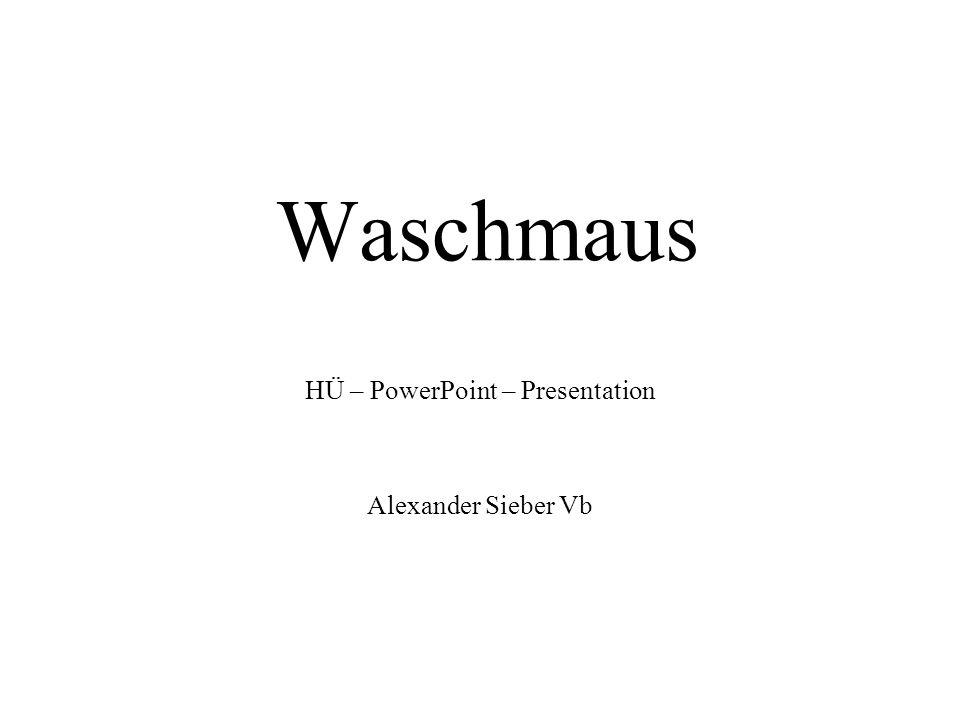Waschmaus HÜ – PowerPoint – Presentation Alexander Sieber Vb