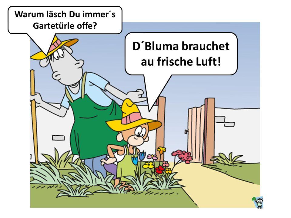 Was isch groß? Schtuagart, aber Linsa mit Schpätzle ond Saitawürschtla in größer.