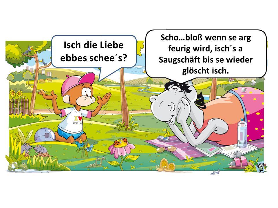 Heidenai, alle Schweizer Pässe sind g´sperrt. Gut, dass mir deutsche Päss henn.