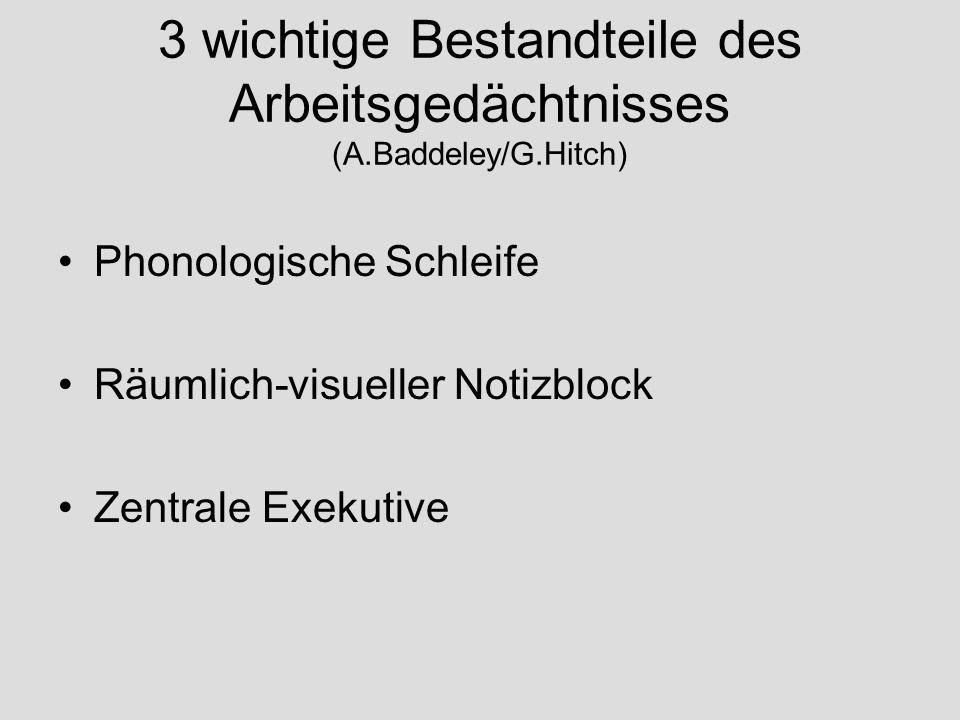 3 wichtige Bestandteile des Arbeitsgedächtnisses (A.Baddeley/G.Hitch) Phonologische Schleife Räumlich-visueller Notizblock Zentrale Exekutive