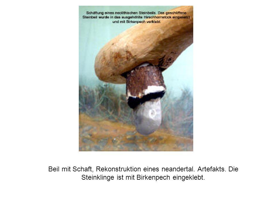 Beil mit Schaft, Rekonstruktion eines neandertal. Artefakts. Die Steinklinge ist mit Birkenpech eingeklebt.