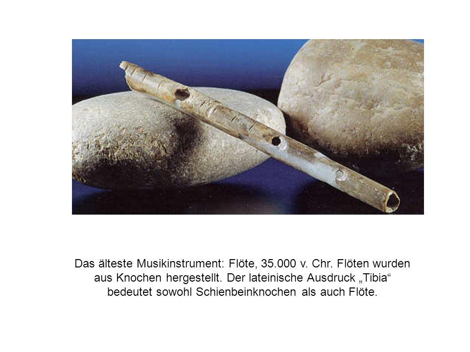 """Das älteste Musikinstrument: Flöte, 35.000 v. Chr. Flöten wurden aus Knochen hergestellt. Der lateinische Ausdruck """"Tibia"""" bedeutet sowohl Schienbeink"""