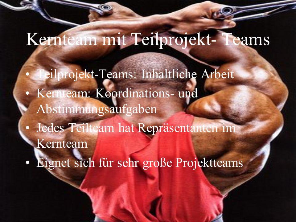 Kernteam mit Teilprojekt- Teams Teilprojekt-Teams: Inhaltliche Arbeit Kernteam: Koordinations- und Abstimmungsaufgaben Jedes Teilteam hat Repräsentant