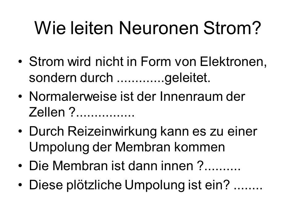 Wie leiten Neuronen Strom? Strom wird nicht in Form von Elektronen, sondern durch.............geleitet. Normalerweise ist der Innenraum der Zellen ?..