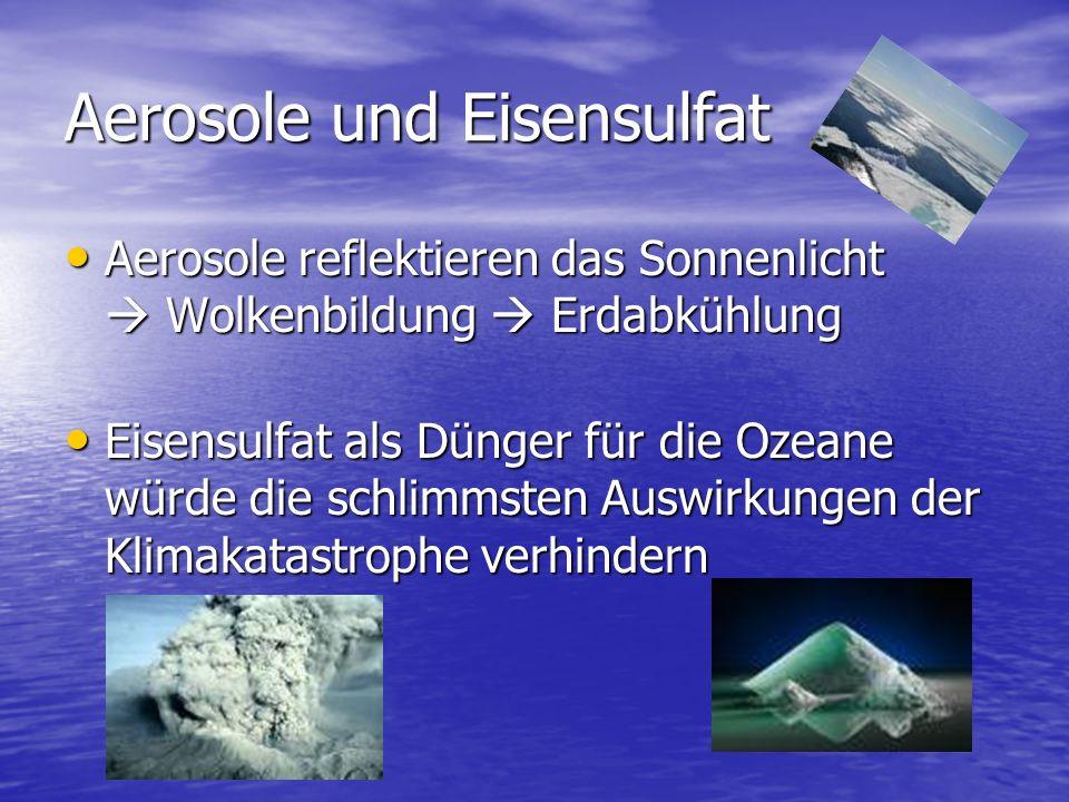 Aerosole und Eisensulfat Aerosole reflektieren das Sonnenlicht  Wolkenbildung  Erdabkühlung Aerosole reflektieren das Sonnenlicht  Wolkenbildung 