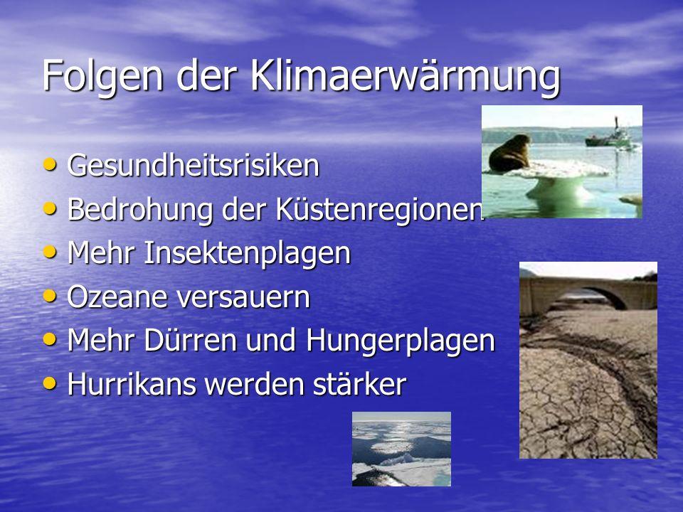 Folgen der Klimaerwärmung Gesundheitsrisiken Gesundheitsrisiken Bedrohung der Küstenregionen Bedrohung der Küstenregionen Mehr Insektenplagen Mehr Ins
