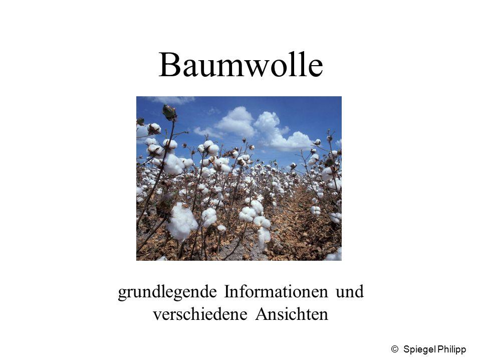 © Spiegel Philipp Baumwolle grundlegende Informationen und verschiedene Ansichten