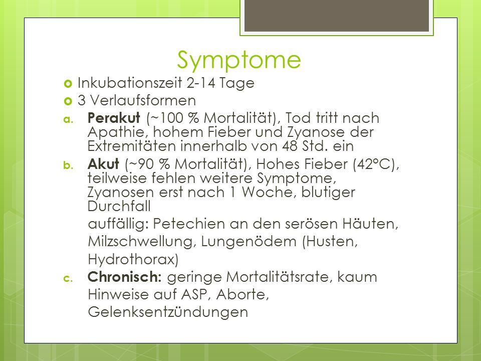 Symptome  Inkubationszeit 2-14 Tage  3 Verlaufsformen a. Perakut (~100 % Mortalität), Tod tritt nach Apathie, hohem Fieber und Zyanose der Extremitä