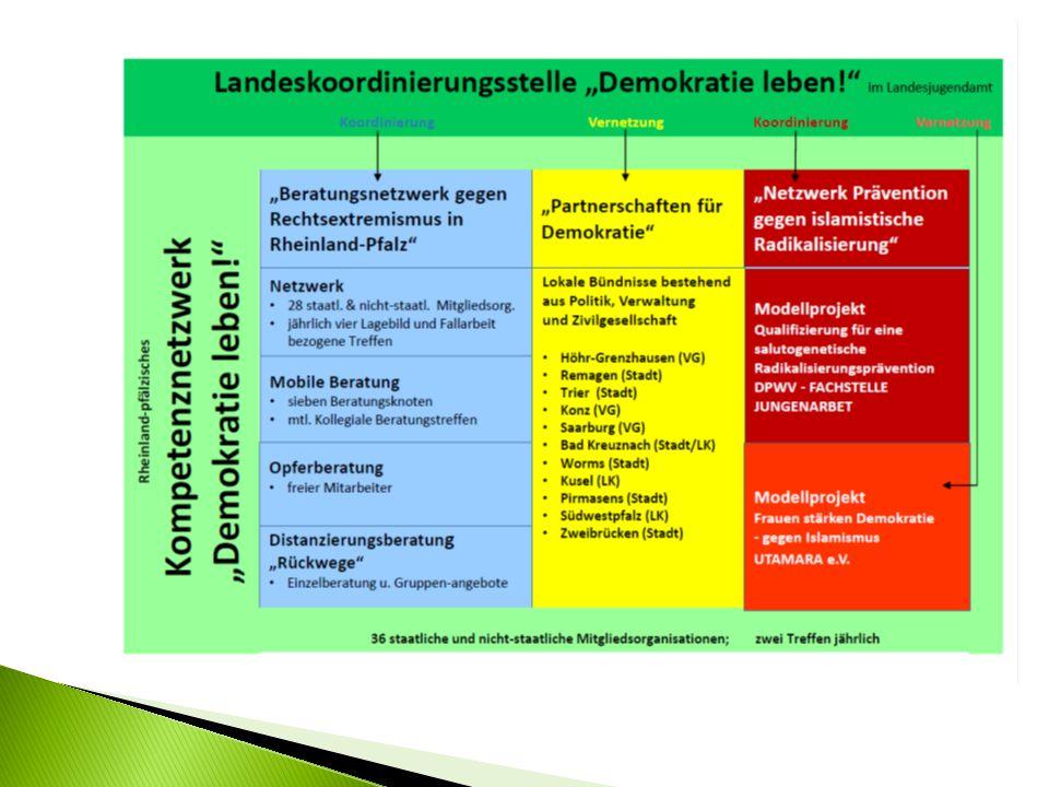 """Was ist eine lokale """"Partnerschaft für Demokratie ."""