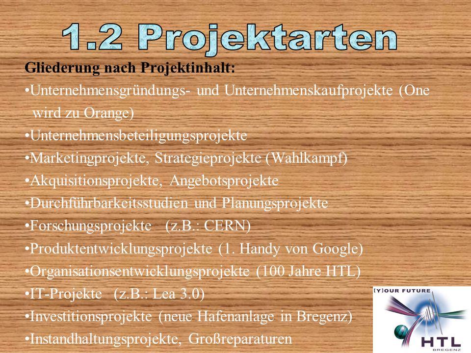 Gliederung nach Projektinhalt: Unternehmensgründungs- und Unternehmenskaufprojekte (One wird zu Orange) Unternehmensbeteiligungsprojekte Marketingprojekte, Strategieprojekte (Wahlkampf) Akquisitionsprojekte, Angebotsprojekte Durchführbarkeitsstudien und Planungsprojekte Forschungsprojekte (z.B.: CERN) Produktentwicklungsprojekte (1.
