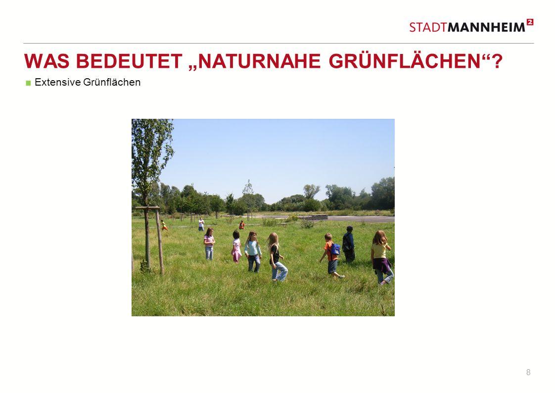 """8 WAS BEDEUTET """"NATURNAHE GRÜNFLÄCHEN""""? ■ Extensive Grünflächen"""