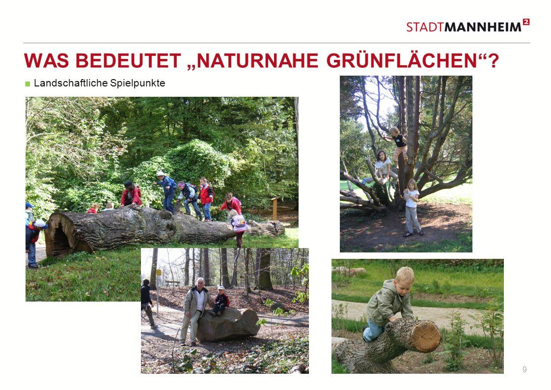 """9 WAS BEDEUTET """"NATURNAHE GRÜNFLÄCHEN""""? ■ Landschaftliche Spielpunkte"""