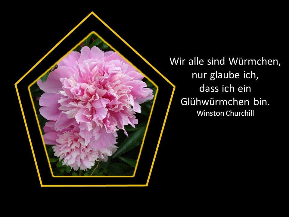 Eine Frau ohne Geheimnisse ist wie eine Blume ohne Duft. Maurice Chevalier