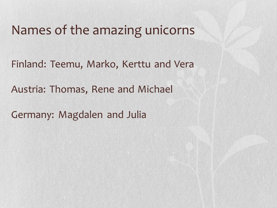 Names of the amazing unicorns Finland: Teemu, Marko, Kerttu and Vera Austria: Thomas, Rene and Michael Germany: Magdalen and Julia