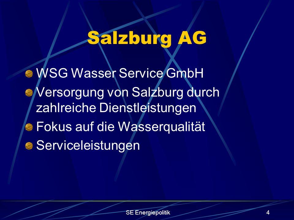 SE Energiepolitik4 Salzburg AG WSG Wasser Service GmbH Versorgung von Salzburg durch zahlreiche Dienstleistungen Fokus auf die Wasserqualität Serviceleistungen